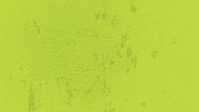 Photo of جيناكم بعرض جديد للجمعة البيضاء خصم ٣٥٪ على باقة الشهر الفترة الصباحية من شركة الراحة *تاريخ …